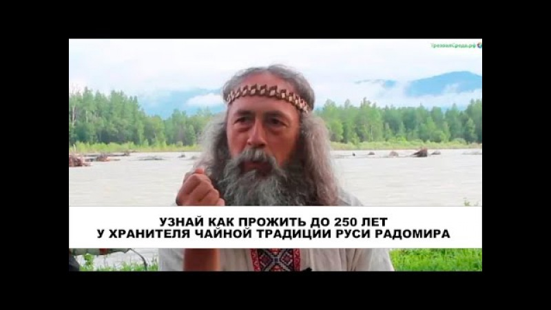 Узнай как прожить до 250 лет у Хранителя чайной традиции Руси Радомира