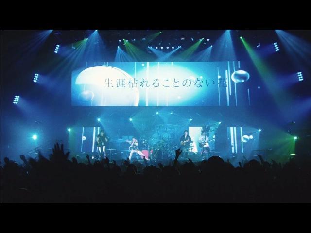 一滴の影響 Live at Osaka-Jo Hall 2016.12.21