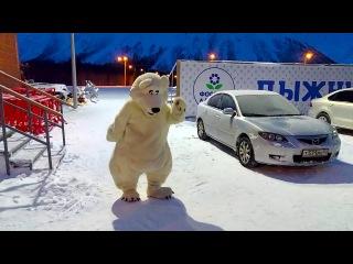 Танец белого медведя 2017