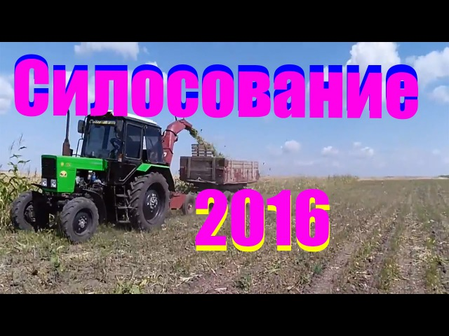 МТЗ 82.1 с косилкой КИР 1.5 и ЮМЗ -6 с прицепом 2птс 4 силосование 2016