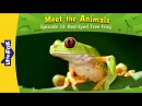 Meet the Animals 33: Red-Eyed Tree Frog | Level 2 | By Little Fox