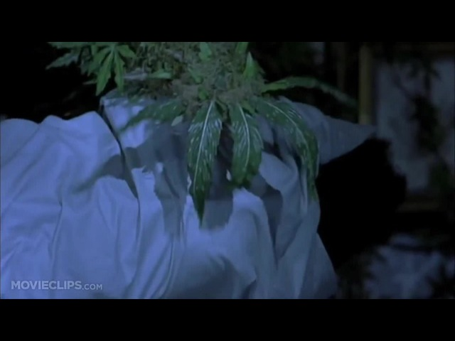 Scary Movie 2 (8/11) Movie CLIP - Marijuana Monster Tokes Shorty (2001) HD