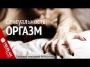Оргазм. Системно-векторная психология. Юрий Бурлан
