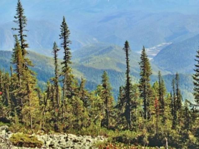 Сибирь. Саянские горы