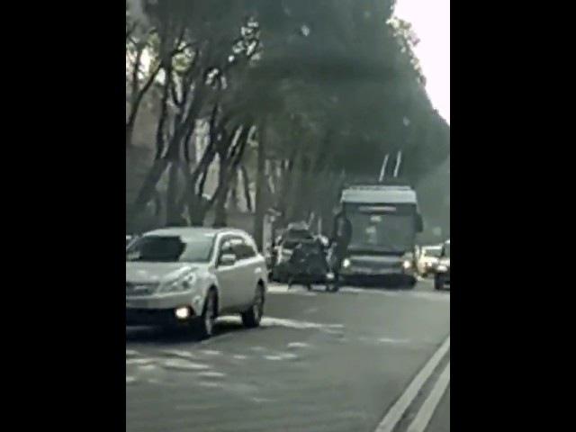 Предполагаемое видео перестрелки в Алматы появилось в Интернете
