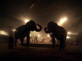 Britney Spears - Circus [HD 1080p] (клип 2009 Бритни Спирс цирк Брітні Спірс кліп)