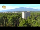 Взял и Поехал! 9 Пицунда, Абхазия. Обзор курорта, пляж и роща