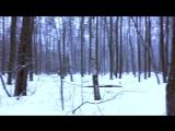 миниVLOG Навестили Карамель Зимний лес