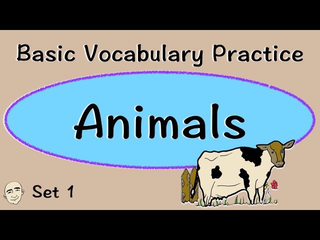 Animals | Basic Vocabulary Practice | ESL | EFL