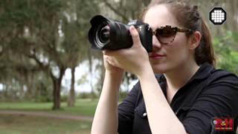 FocusEd: Сравнение камер Sony Alpha 7S II и Sony Alpha 7R II (часть 1)