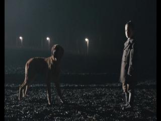 Голый среди волков / Nackt unter Wolfen (2015)