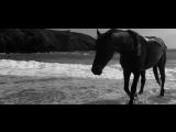 Phaeleh - Storm (feat Jess Mills)