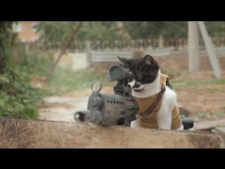 КОТЫ против Зомби Прикол (Cats vs Zombies)