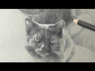 Water Soluble Graphite Pencils!