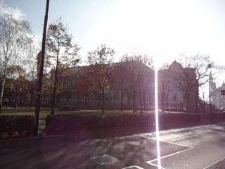 В Вене рано утром едем с ветерком по делам
