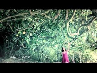 Cecilia Cheung - Official MV 2011 曾经 官方版 -张柏芝