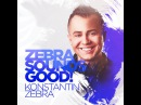 Konstantin ZEBRA - ZEBRA Sounds GOOD! 001