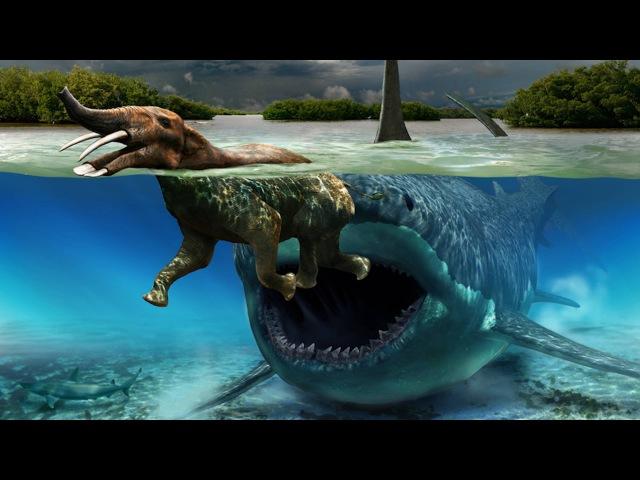 Морские Хищники. Подводные Чудовища. NatGeoWild