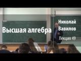 Лекция 49 Высшая алгебра Николай Вавилов Лекториум