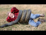 Giant Anaconda vs Man | Anaconda Attack Real Man | Anaconda Attack Amazing Video