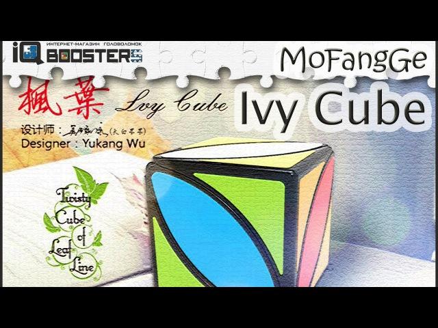 QiYi Ivy Cube обзор | IQBoosters.ru