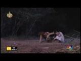 Khmer Thai Drama Pongsnae Tae Oun Episode 26 P 6