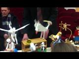 Стоп- удивительное событие))Видео-репортаж с воскресной ВЫСТАВКИ...
