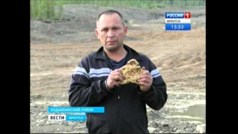 Рекордно большой золотой самородок нашли в Бодайбинском районе,