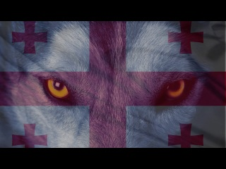 BAGRAT NINIASHVILI : DMANISI WOLF