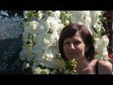 Это не фотошоп. Это наши мальвы. Garden OF Drems. G. Marradi. MALVA. Very beautiful music.