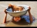 ГЕРОИ СРЕДИ НАС подборка добрые поступки достойны уважения спасения помощь 4