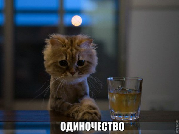 Валера Самойлов |