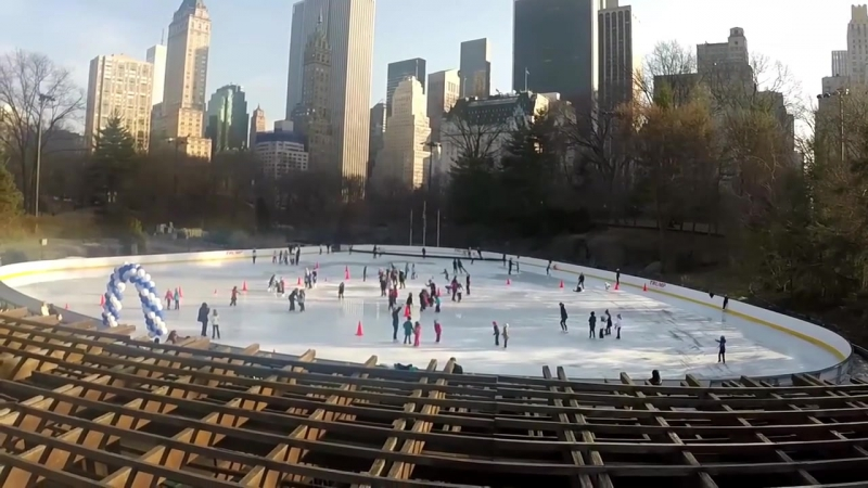Летающие пингвины - FlypengsTV США. Сезон 2. Серия 2. Бруклинский мост и Централ парк.