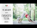 5 Асан для гибкого тела — Йога для начинающих.