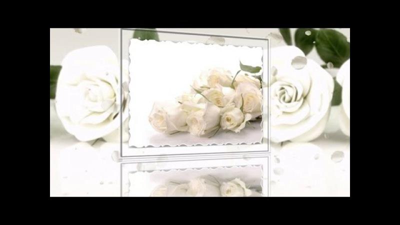Белые розы надежды