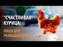 Счастливая курица пища для размышления.