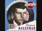 Вадим Мулерман - Налетели вдруг дожди