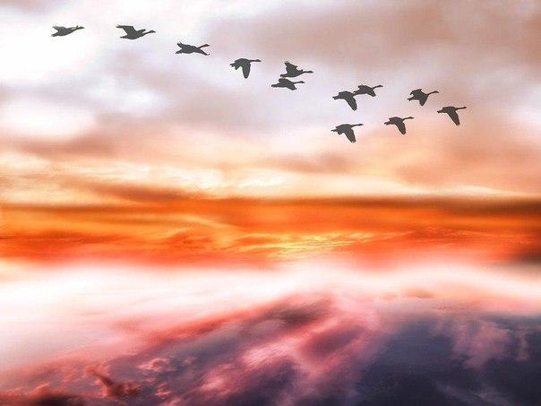 Возможность дается тем, кто мечтает.Чудо дается тем, кто верит.