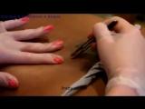 Видеоурок-Эпиляция зоны бикини с помощью пинцета ( не эротика не сэкс )