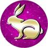 Факты о Кроликах