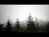 Five Trees  - Yaron Herman