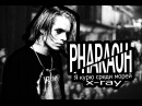 PHARAOH - X-RAY