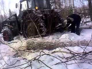 МТЗ - 82 трелюет лес / MTZ - 82 forest trellech