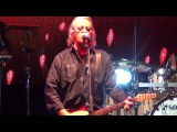 Umberto Tozzi - Ti amo (live)