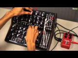 No talk, just sound - Moog Mother 32 (PWM Madness)