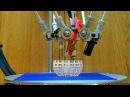 Geeetech G2s Pro Dual extruder 3D printer Test print 2