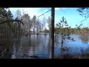 поездка на болото 8 серия