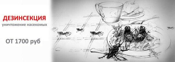 Дезгарант делает дезинсекцию уничтожение тараканов клопы макулатура семилуки