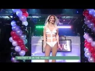 Фанат Бритни Спирс ложился под скальпель 90 раз, чтобы походить на кумира