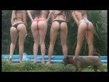ПРИКОЛЫ с Девушками ► Ржачные приколы с пьяными девушками Приколы 18 плюс про девушек HD. 228